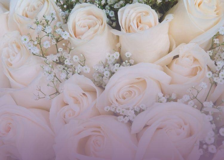 Baño de Rosas Blancas para reconectar con tu esencia 2
